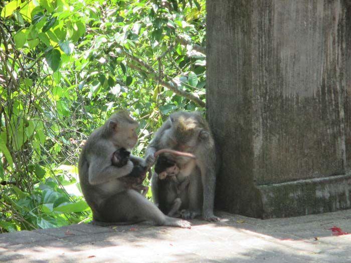Labuan Sait, Uluwatu, Bali