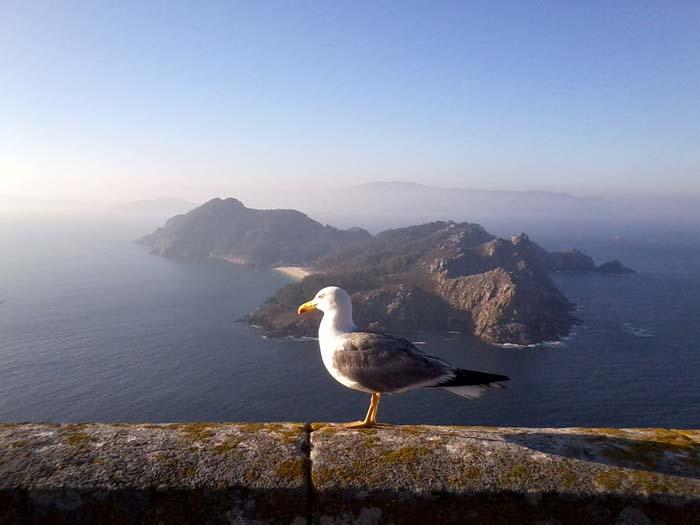 Parque Nacional Illas Atlánticas Islas Cíes
