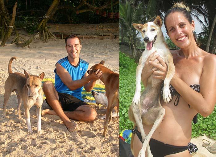 Voluntariado con perros en Sri Lanka