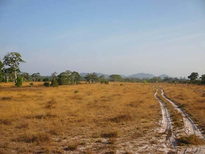 Tour isla Koh Phra Thong