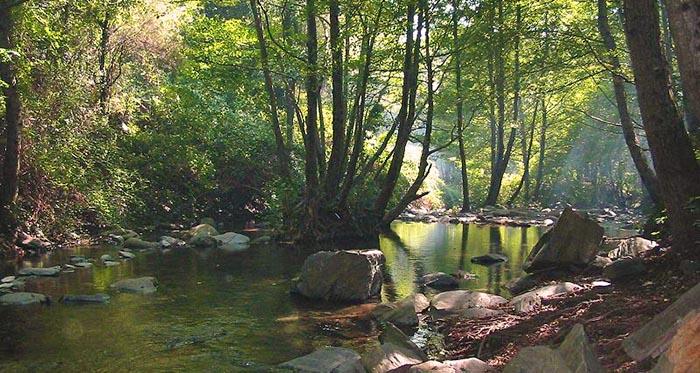 Excursiones de un día en Cataluña. Parque Natural de Montseny