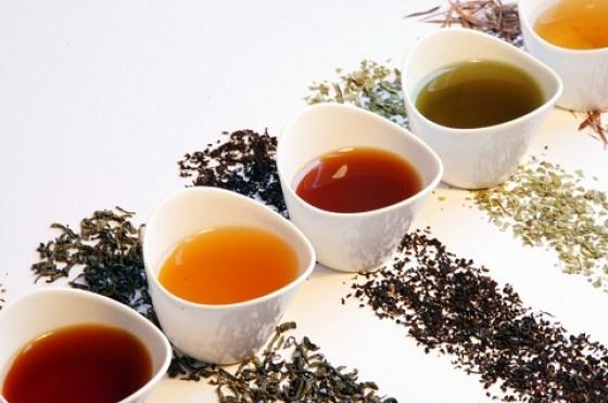Risultati immagini per tipi di tè
