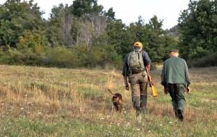 sospensione caccia