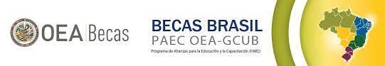 Becas para estudiar en Brasil del PAEC, la OEA y el GCUB.
