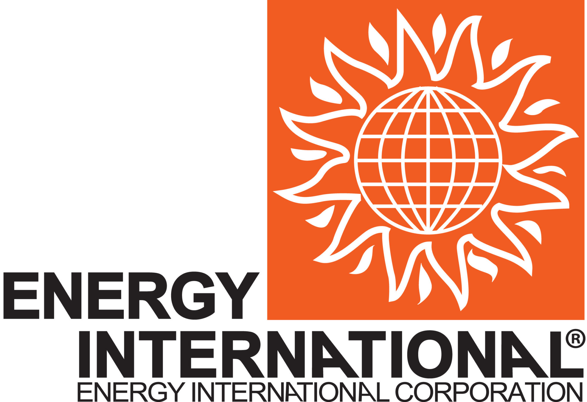 The Energy International Corporation (EIC)