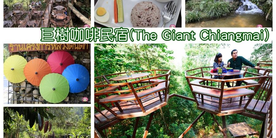 Teen Tok Royal Project Develop,The Giant Chiangmai,巨樹咖啡民宿,泰國旅遊,泰國景點,泰國清邁,泰國美食,清邁祕境 @VIVIYU小世界