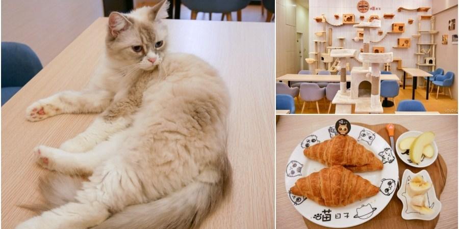 [桃園美食]喵日子café 向陽公園附近新開寵物餐廳.貓咪主題式咖啡館.無用餐時間限制免服務費下午茶 @VIVIYU小世界
