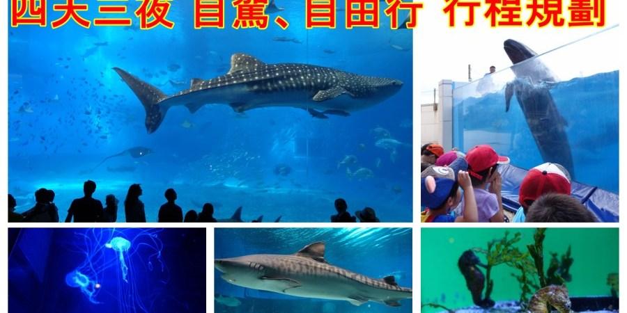 [沖繩.旅遊]四天三夜自駕、沖繩自由行旅遊行程懶人包~自駕租車、國際通、花人逢、美麗海水族館走遍必去景點 @VIVIYU小世界