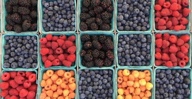diepvries fruit vers fruit