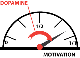 dopamine motivation
