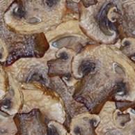 Pizzabook tile - mushroom