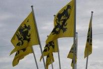 Afbeeldingsresultaat voor vlaams leeuw vlag