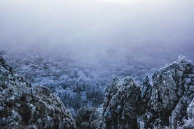 Mlžné zimní ráno II