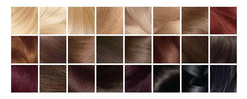 Garnier Olia Barva Na Vlasy Paleta VLASY A ESY
