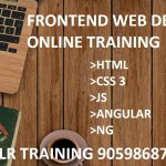 Frontend web developer online training