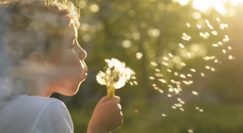 Mon fils souffre d'allergies multiples