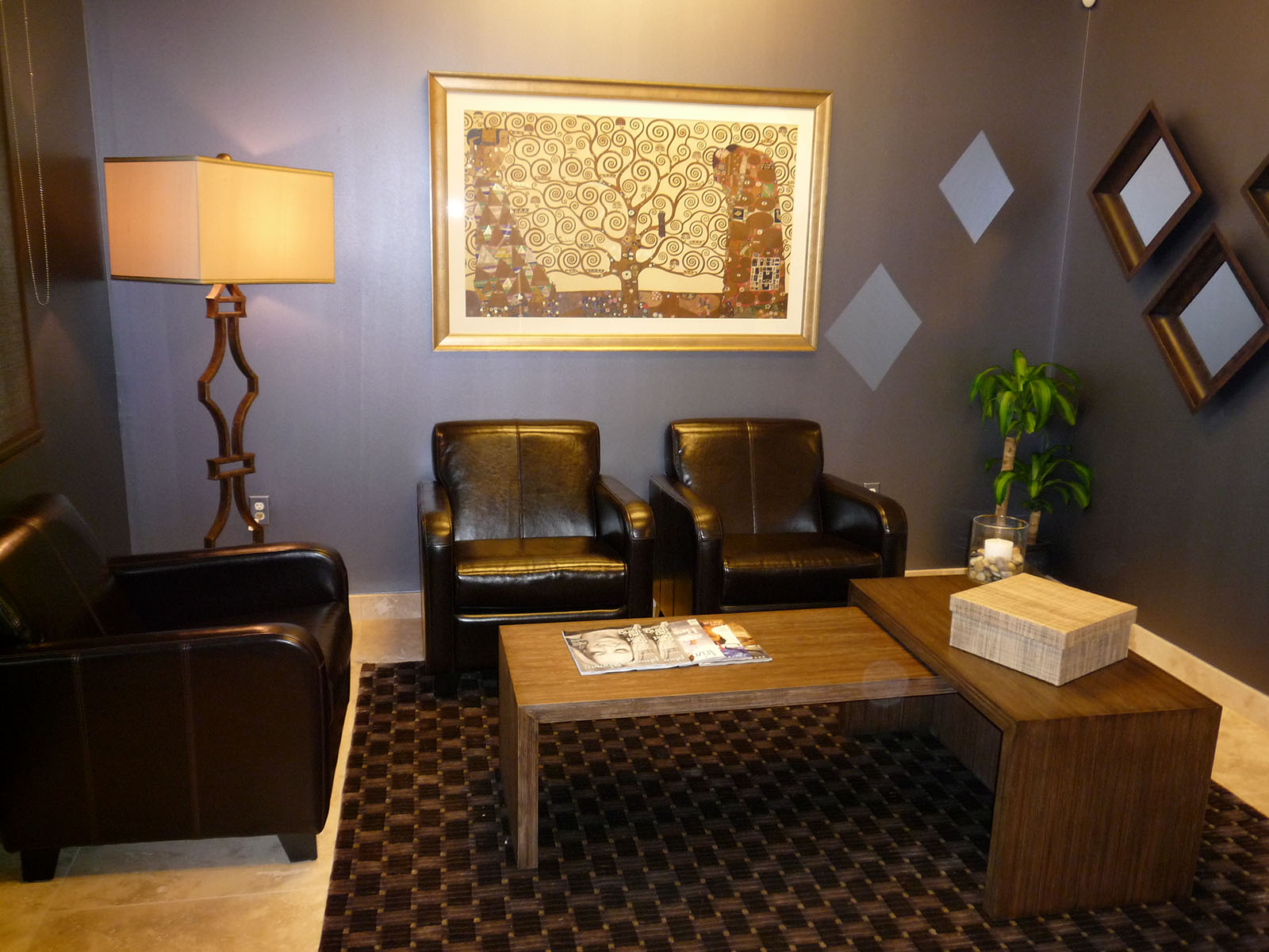 VM Concept   Interior designer Scottsdale   Portfolio Commercial   Plastic Surgery Center at the Princess  Scottsdale