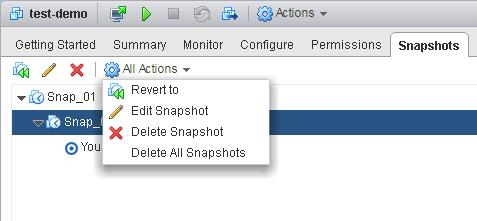 Managing VMware Snapshots