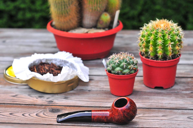 savinelli one starter kit fajka