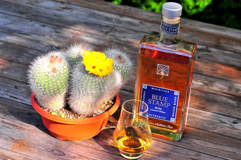 rum blue stamp kaktus