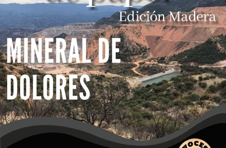 Voces de Papel Madera #2