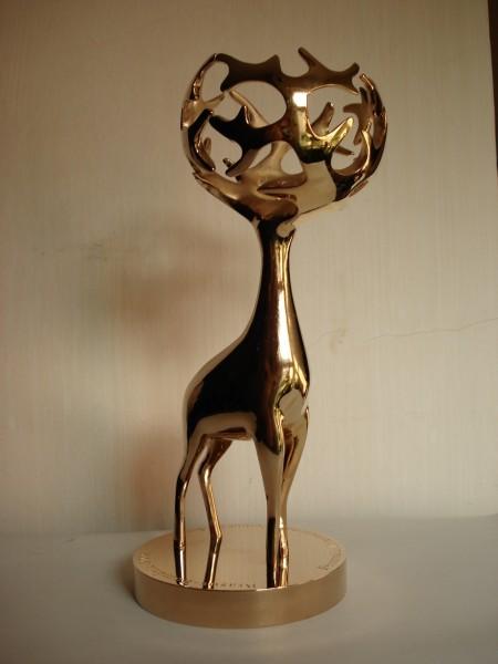 trofeul Cerbul de Aur Brasov