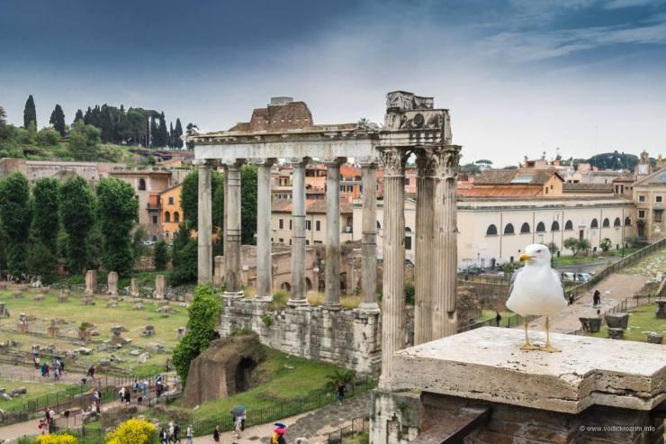 Rimski forum (foto: Vodič kroz Rim)