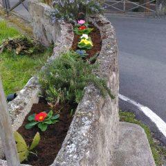 Pulizia e messa a dimora di fiori nell'aiuola di via Alcide De Gasperi