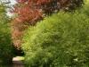 Durchblick im Greizer Park