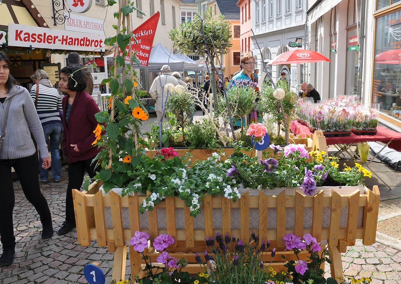 Mit vielfältigen Aktionen feiern die Greizer den 1. Mai