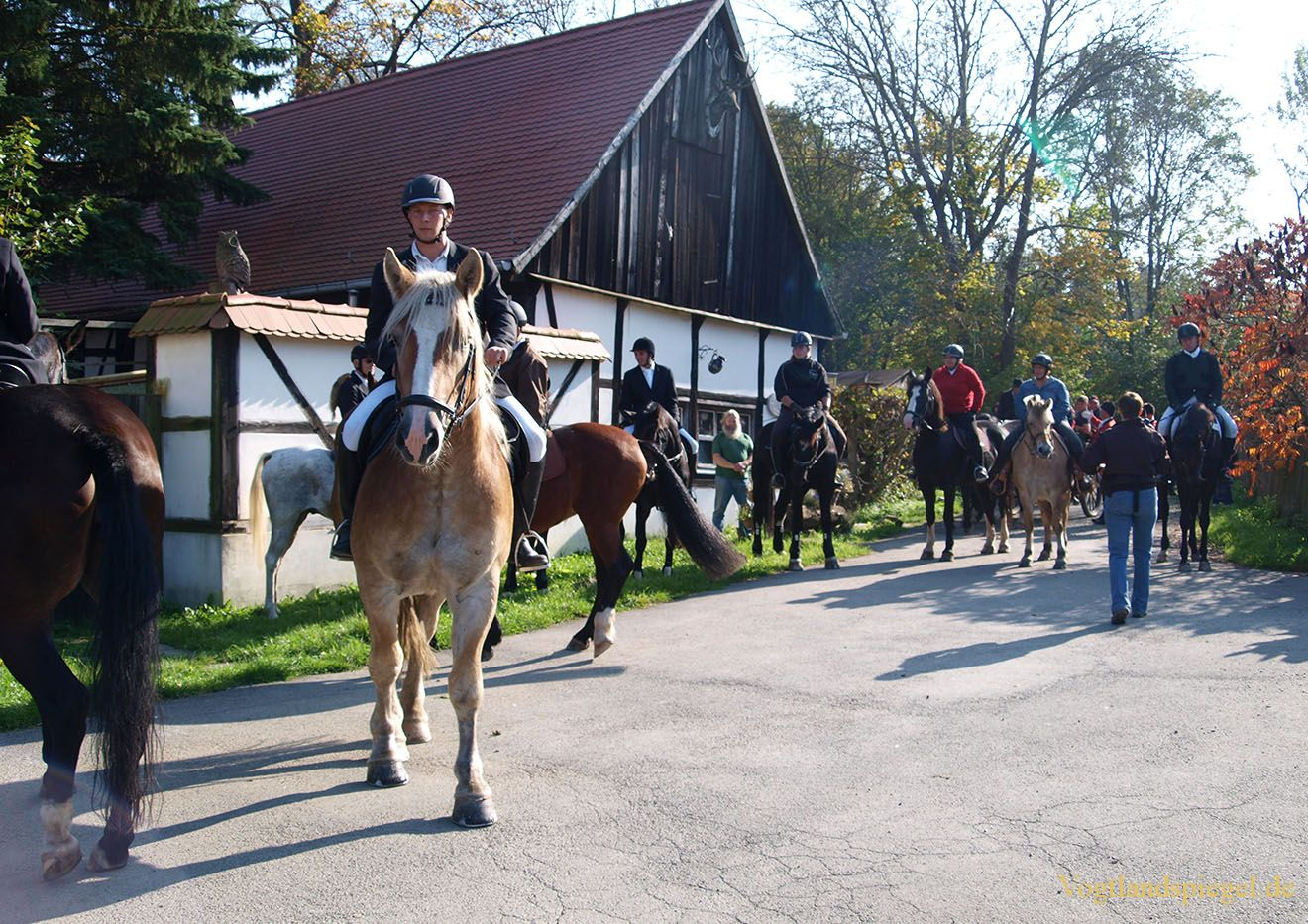Traditionelle Fuchsjagd des RFV Mohlsdorf e.V.