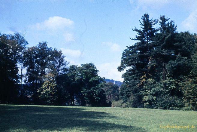 Alte Ansichten – Greizer Park