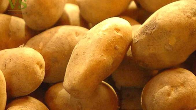 Früh Kartoffeln