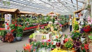 Gartenmarkt Schönfeld: Frühlingsfest ein voller Erfolg