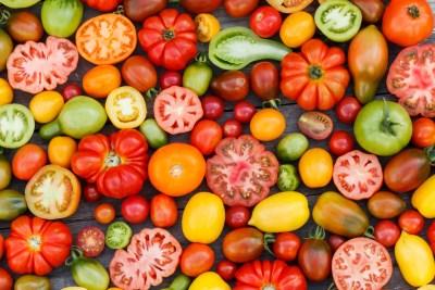 Tomaten Arten