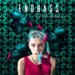 Endrass cover 1