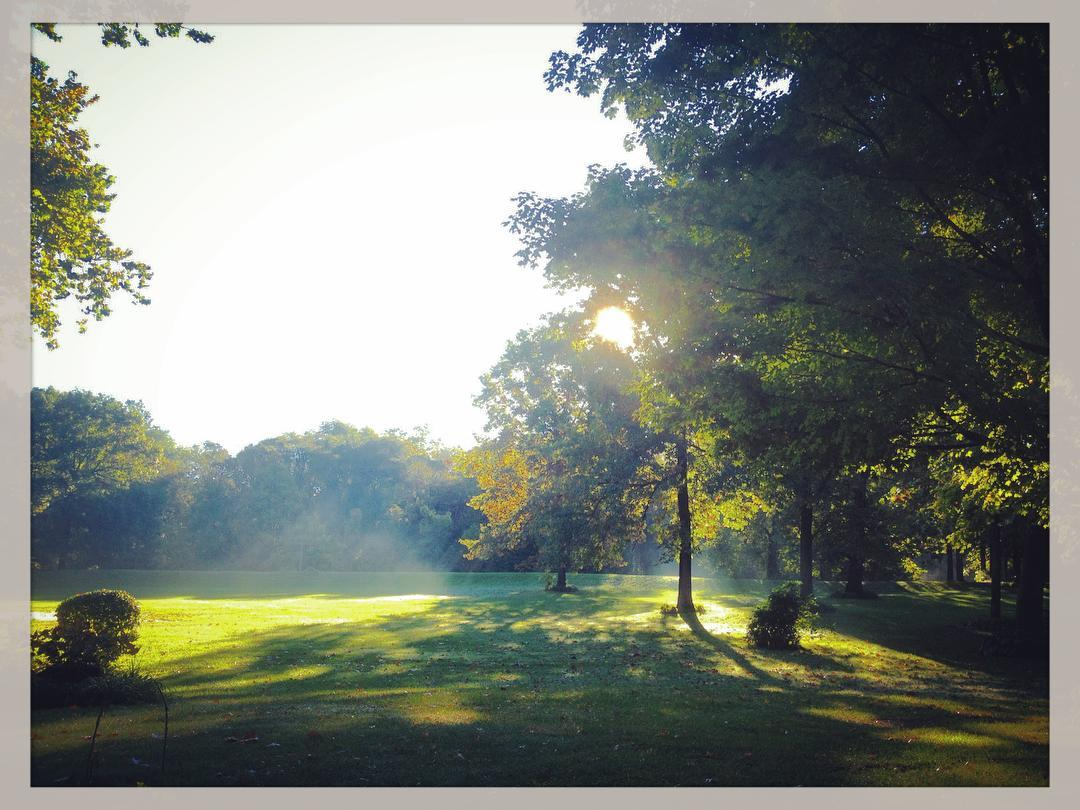Morning mist. #voiceministriescamp #voiceministries