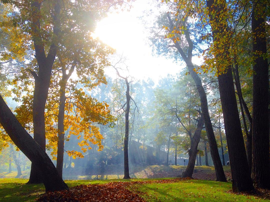 Morning sun at The Camp #voiceministriescamp #voiceministries #fallcolors
