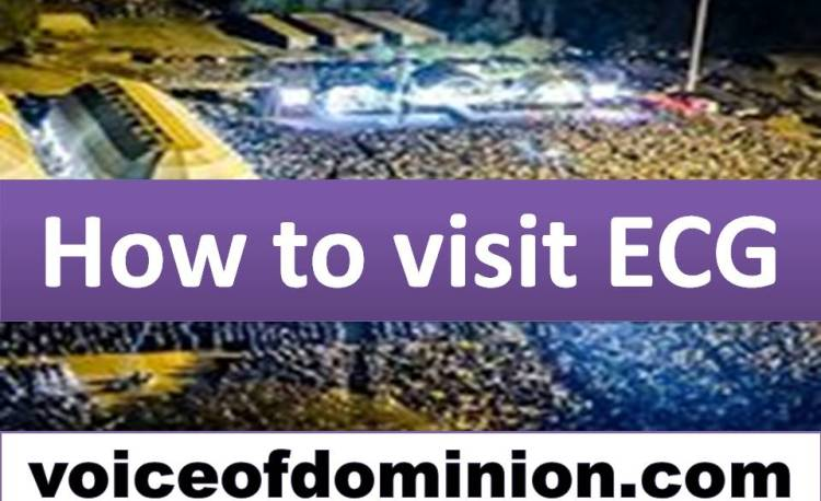 How to visit ECG
