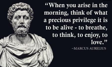 meme featuring a drawing of a Marcus Aurelius bust - with curly hair, a beard, and a robe on his shoulders and the text of a quote: When you arise each morning this of what a precious privilege it is to be alive - to breathe, to think, to enjoy, to love