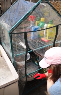 Me, wearing a pink hat and red gloves, leaning down to a roasting pan inside a plastic-covered outdoor shelving unit.