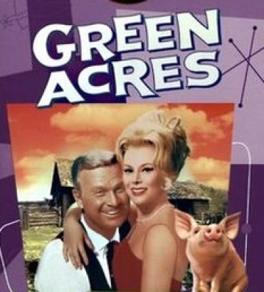 Cover of a Green Acres DVD set showing stars Eddie Albert and Eva Gabor in an embrace, with Arnold the pig off to one side.