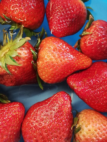 A close-up of fresh strawberries.