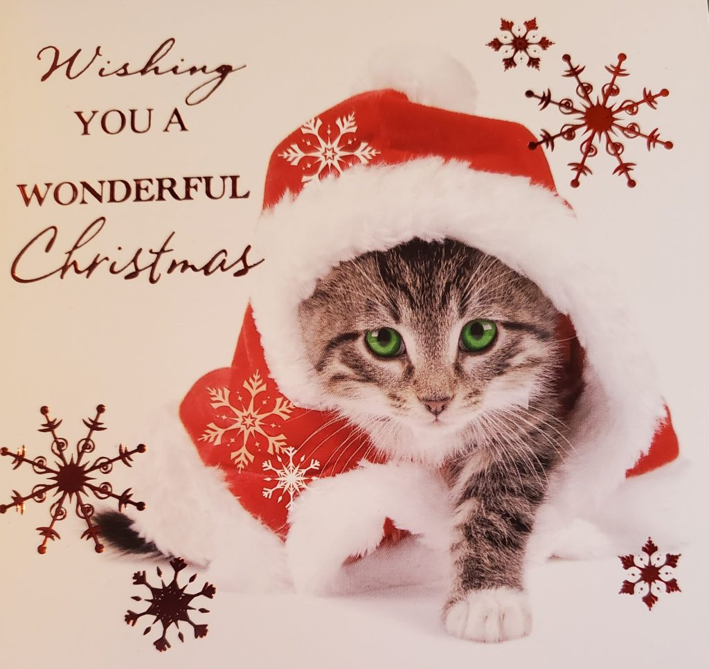 Tiny kitten looks up, wearing a Santa hat, beside the words, Wishing you a wonderful Christmas