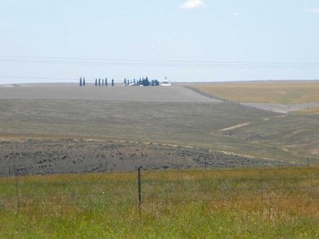 Big fields