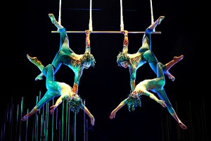 cirque-du-soleil msc crociere