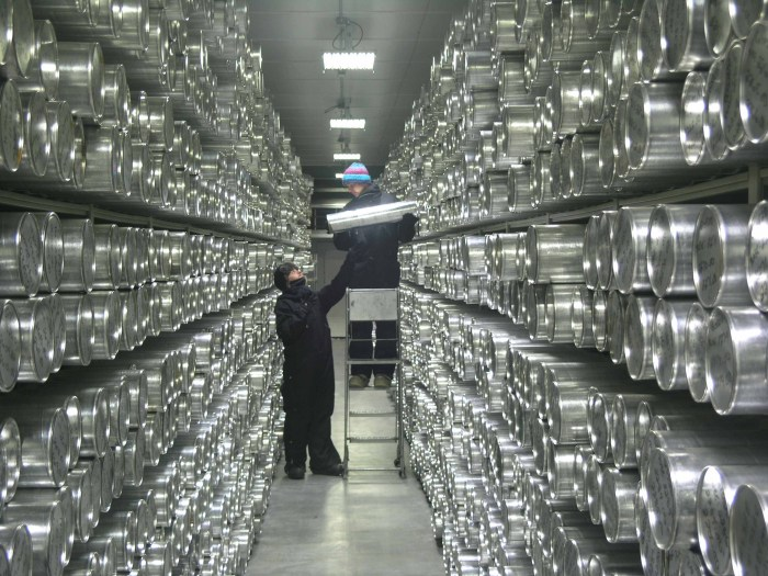 Ice cores are stored in very large freezers. Here is the one at the National Ice Core Laboratory, NICL, in Lakewood, Colorado, USA. (NICL photo)