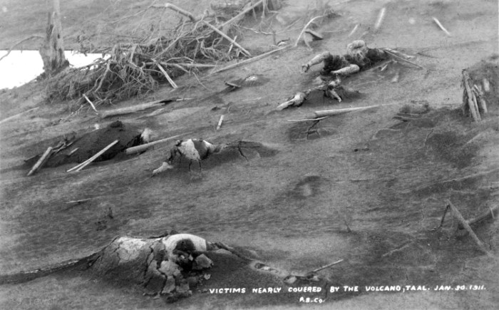 taal-1911-victims-pugilistic