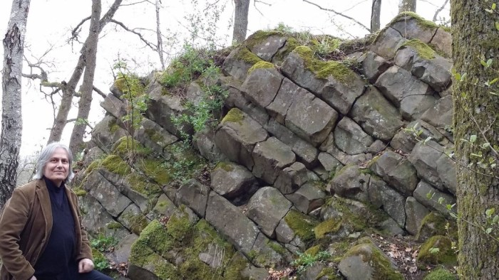 The 110-million year old pile of columnar basalt at Rallate. (Photo: Shérine France)