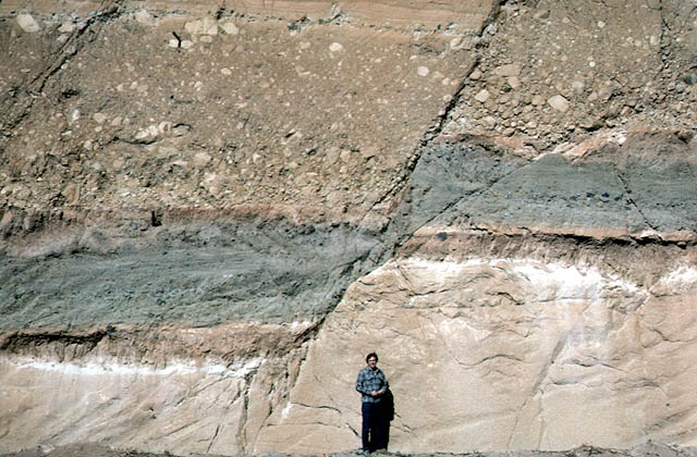 A dip-slip-faulted sedimentary rock layers exposed in a road cut in Guatemala. Solid ground can move here. From http://geomaps.wr.usgs.gov/archive/scamp/html/aug88p.html